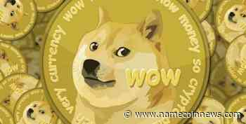 Will Dogecoin (Doge) Forestall the Ongoing Bear Market Pressure? - NameCoinNews
