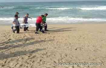 Muere ahogado un turista en playa de Puerto Escondido - Quadratín Oaxaca