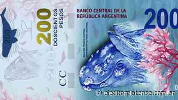 """""""Es incomprensible cambiar a San Martín por una ballena"""", dijo Alberto Fernández sobre los billetes - El Editor Platense"""