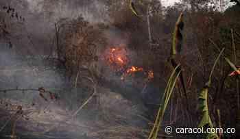 Bomberos de Boyacá atienden nuevo incendio en Saboyá - Caracol Radio