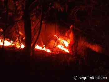 En Zona Bananera se produjo un incendio forestal por un tabaco de marihuana - Seguimiento.co