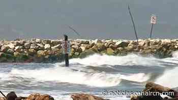Fuertes vientos provocan mortandad de peces en Puerto Colombia - Noticias RCN