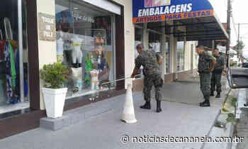 Jacaré aparece em loja na avenida independência em Cananeia e mobiliza a Polícia Ambiental - Noticia de Cananéia