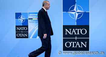 Crisis in Syrian Idlib Has Firmly Put Turkey Back into NATO's Sphere