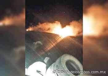 Afecta a vecinos de Buenavista incendio de basurero - Tribuna de los Cabos