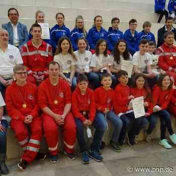 Wasserwacht-Wettbewerb im Rettungsschwimmen - Viechtach - Passauer Neue Presse