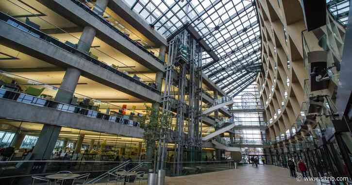 Witness criticizes Salt Lake City library security guard's treatment of apparent book thief