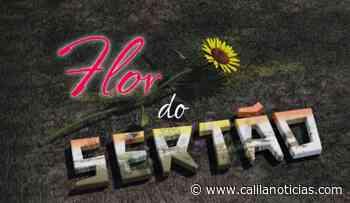 Moradora de Santaluz que já escreveu vários roteiros de novela, cria canal para exibir trabalho em busca de um sonho - Calila Notícias