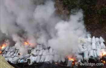 Incineran casi 3 mdp en marihuana en Santiago Papasquiaro - La Voz de Durango