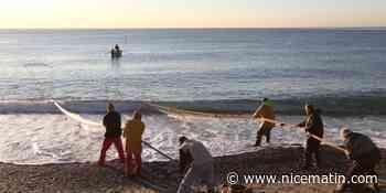 Les contrôles renforcés autour de la pêche à la poutine - Nice-Matin