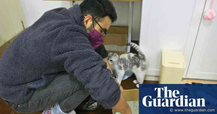 Wuhan's cat rescuer: the man saving pets abandoned during coronavirus outbreak – video