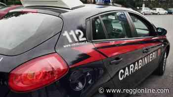 Reggiolo, furti a distributori di bevande: arrestato un 62enne - Reggionline