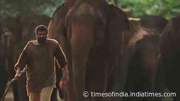 Haathi Mere Saathi: Rana Daggubati opens up about challenges he faced during shoot