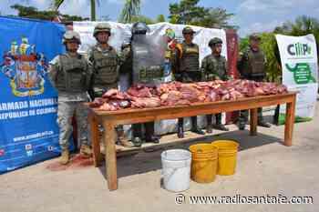 Incautaron 170 kilos de carne de procedencia venezolana en Arauca - Radio Santa Fe
