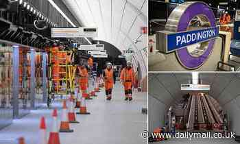 Crossrail's deputy chief steps down amid more delays as workers are pictured fitting platforms