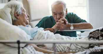 'Hospices are not places people are delivered to die - they are full of love'