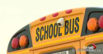 Seatbelts on school buses coming to Sudbury, Ont., as part of federal pilot