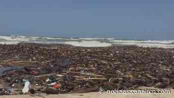 Apareció una 'isla de troncos' en el mar de Puerto Colombia - Noticias RCN