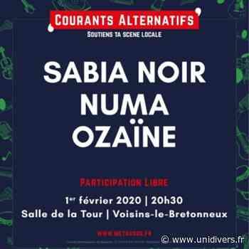 Courants alternatifs #6 Salle de la Tour Voisins-le-Bretonneux 1 février 2020 - Unidivers