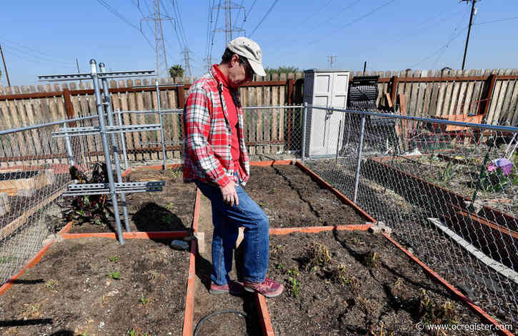 Retired federal investigator now digging into his own community garden mystery