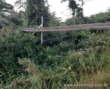 San Pedro: cuantiosos daños y colonias sin energía eléctrica por fuerte temporal - EL TERRITORIO