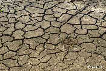 Mitry-Mory reconnue en état de catastrophe naturelle après la sécheresse de 2018 - actu.fr