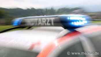 Ohlstadt (Bayern): Hund rettet vermisste Frau in letzter Sekunde   Ohlstadt - merkur.de