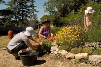 Prades-le-Lez : des ateliers de jardinage bio à la Maison Départementale de l'Environnement - actu.fr