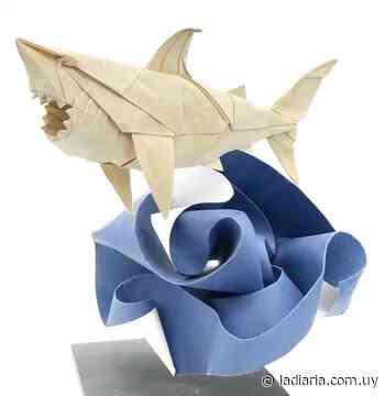 Plegados con estilo: En Colonia del Sacramento abrió el Museo del Origami - la diaria