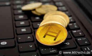 Hedera Hashgraph: Google-Partnerschaft schickt HBAR-Kurs gen Norden - BTC-ECHO Bitcoin & Blockchain Pioneers