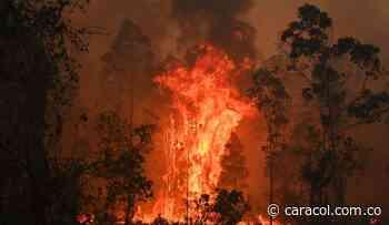 Sin control amanece un incendio forestal entre Saboyá y Sutamarchán, Boyacá - Caracol Radio