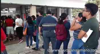 """""""97 % de los maestros en Yucatán cobran a tiempo"""": Loreto Villanueva - Yucatán a la mano"""