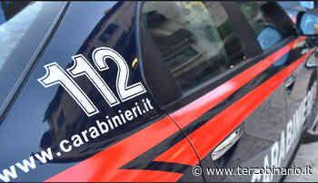 Incendio a Tor Lupara: pescheria in fiamme - TerzoBinario.it