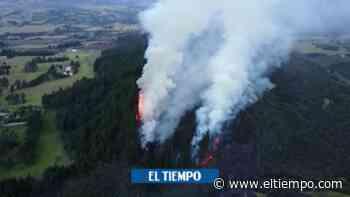 Alerta por incendio forestal en Guasca, Cundinamarca - El Tiempo