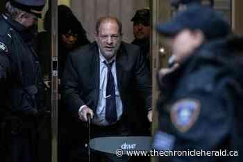 Weinstein accuser's agent testifies in New York rape trial - TheChronicleHerald.ca