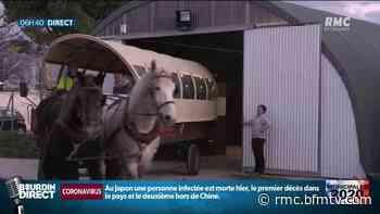Municipales 2020: à Vendargues, les enfants vont à l'école en calèche - BFMTV.COM