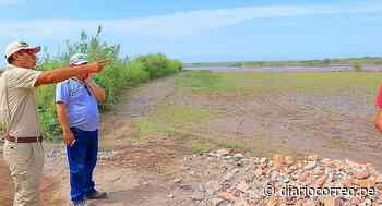 200 hectáreas de cultivos inundadas en Punta de Bombón - Diario Correo