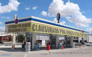 ▷ Habrá libre competencia entre gasolineras: Alejandra de la Vega - Mexico Noticias Ultima Hora - Noticias por el Mundo