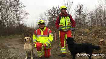 Bundesweite Prüfung von Rettungshunden bei Torgau - MDR