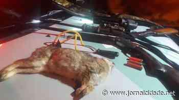 Dupla é presa por caça ilegal após matar coelho em Brotas - Grupo JC de Comunicação