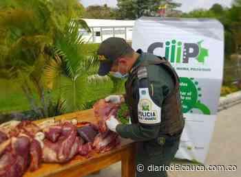 Incautados 170 kilos de carne en operativos contra el contrabando en Arauca - Diario del Cauca