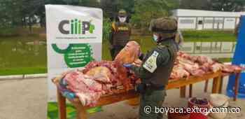 Ofensiva contra contrabando de carne en Arauca, incautan 464 kilos de carne de Venezuela - Extra Boyacá