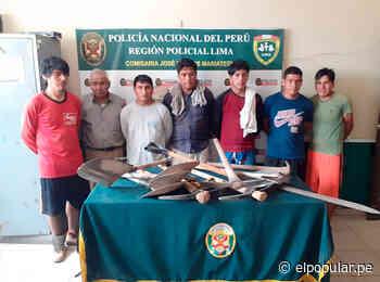 Villa María del Triunfo: Detienen a traficantes de terreno que destruían el 'Santuario de las vizcachas' [FOTOS] - El Popular