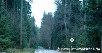 """Sturm """"Sabine"""" wütet in Bad Wurzach, Isny und Leutkirch - Schwäbische"""