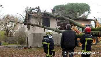 Fontenilles. Intempéries en Haute-Garonne : «L'arbre est tombé sur notre maison» - ladepeche.fr