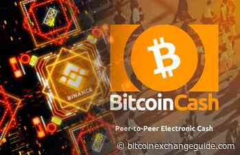 Bitcoin Cash (BCH) Price Analysis (February 16) - Bitcoin Exchange Guide