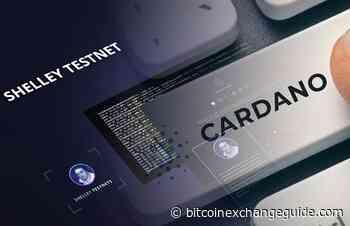 Cardano (ADA) Price Analysis (February 15) - Bitcoin Exchange Guide