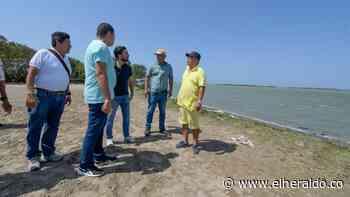 En video | Arrancó recuperación de Ciénaga de Mallorquín - El Heraldo (Colombia)
