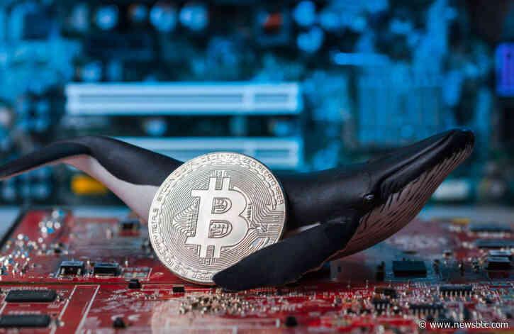 A $2M Bitcoin Long Just Got Liquidated on Binance; Start of a Steep Correction?