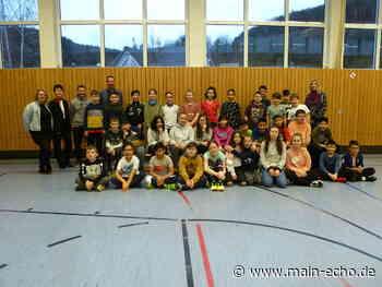 Ringen und Raufen nach Regeln an der Mittelschule Elsenfeld - Main-Echo